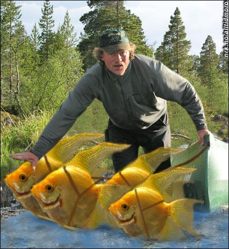 - Og når jeg ferdes til vanns har jeg dette spannet med sibirske gullfisker. (Alltid Moro)