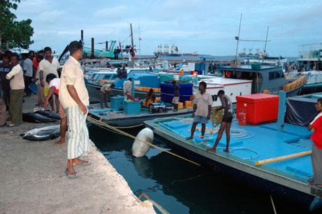 Over 99 % av Maldivene består av hav, og praktisk talt all næringsaktivitet har tilknytning til havet. Foto: NRK