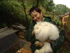 Signe Kvamsøy med angora-kanin