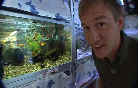 Per Olav inspiserer akvarier. Foto: NRK