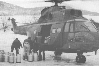 Til og med helikopter har vore teke i bruk i mjølketransporten frå Veitastrondi