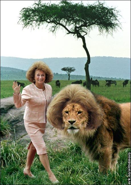 Eli hjelper dyrene i Afrika. (Alltid Moro)