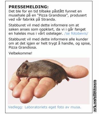 (Innsendt av Tove, Oslo)