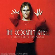"""Høydepunktene fra ti Steve Harley-plater er nå samlet i den lille boksen """"The Cockney Rebel"""" (EMI)."""