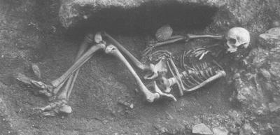 Skjelett av 17 år gamal gut i Grønhelleren. Foto: Bergen Museum