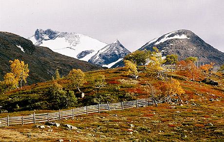 Hva med en tur over Sognefjellet i vakre høstfarger? Foto Trond Tandberg, Scanpix.