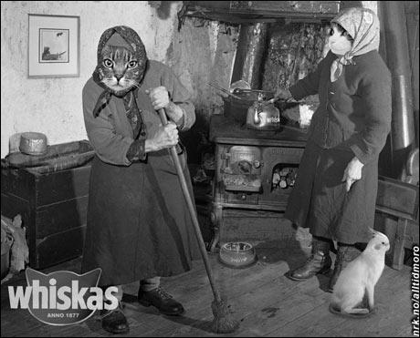 Whiskas - anno 1877 (Jan-Roger Nielsen)