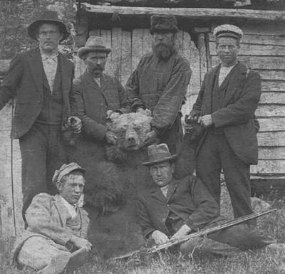 I Jølster og Gloppen var det mykje bjørn på 1800-talet. Dette er ein av dei siste som vart felt i Breim. Årstalet skal vere 1903.