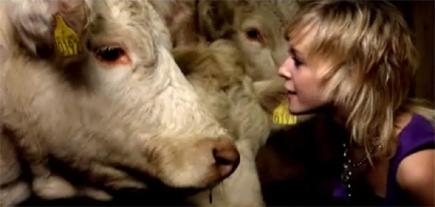 Cyaneed: Nordnorske chics med bein i nesa!